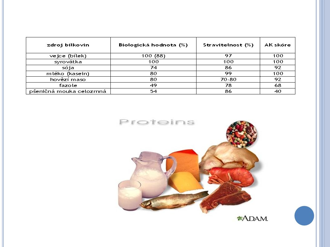 FUNKCE Strukturální Transportní Enzymatické Hormonální Imunologické Acidobazické Energetické