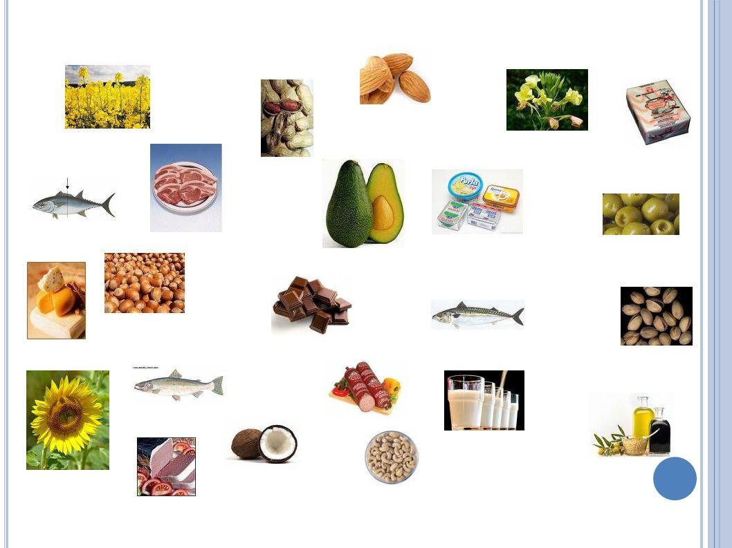 FUNKCE TUKŮ Nejvydatnější zdroj energie Nositelé nezbytných látek pro lidský organismus (esenc.