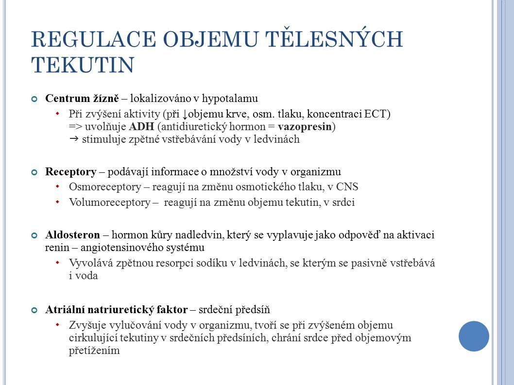 REGULACE OBJEMU TĚLESNÝCH TEKUTIN Centrum žízně – lokalizováno v hypotalamu  Při zvýšení aktivity (při ↓objemu krve, osm.