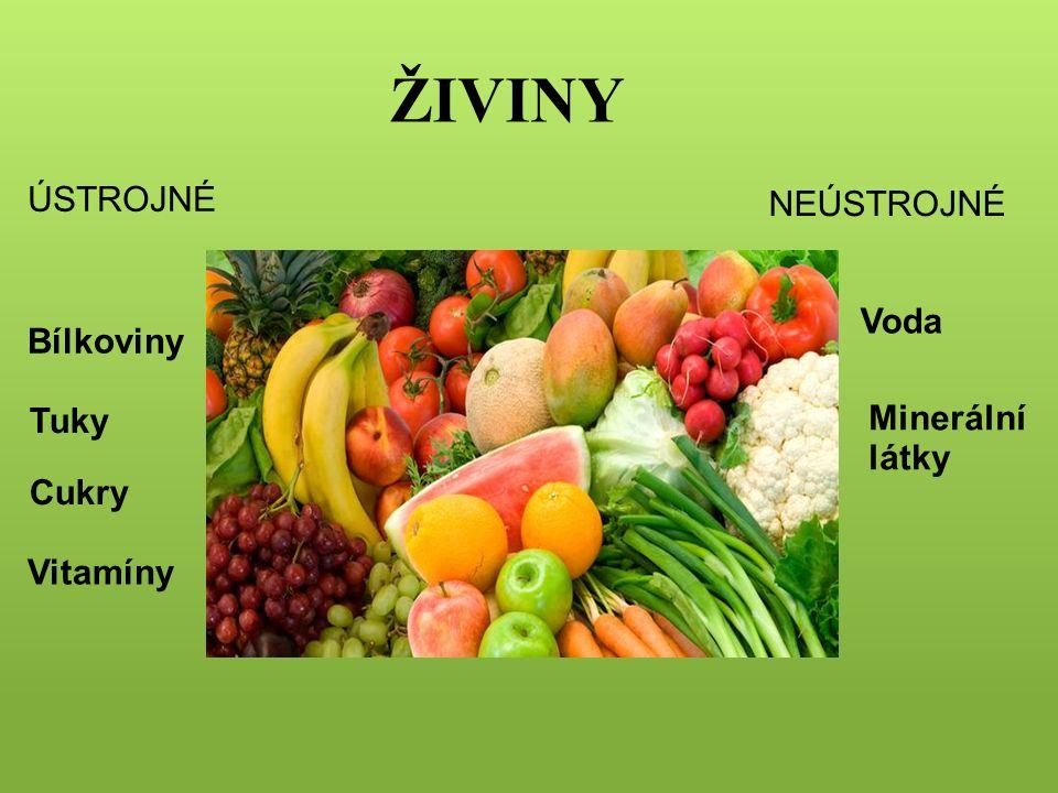 ŽIVINY ÚSTROJNÉ Bílkoviny Tuky Cukry Vitamíny nenahraditelné: svalstvo, růst, imunita hlavní zdroj energie podíl na řízení životních funkcí nejbohatší zdroj energie (teplo) maso, mléčné výrobky, luštěniny vláknina