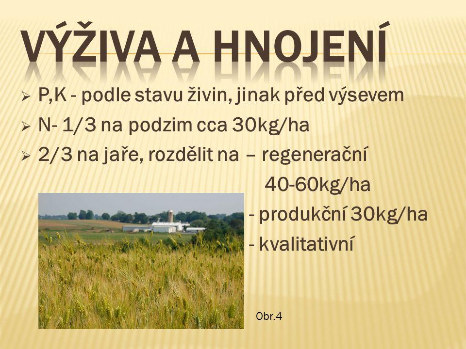  P,K - podle stavu živin, jinak před výsevem  N- 1/3 na podzim cca 30kg/ha  2/3 na jaře, rozdělit na – regenerační 40-60kg/ha - produkční 30kg/ha - kvalitativní Obr.4
