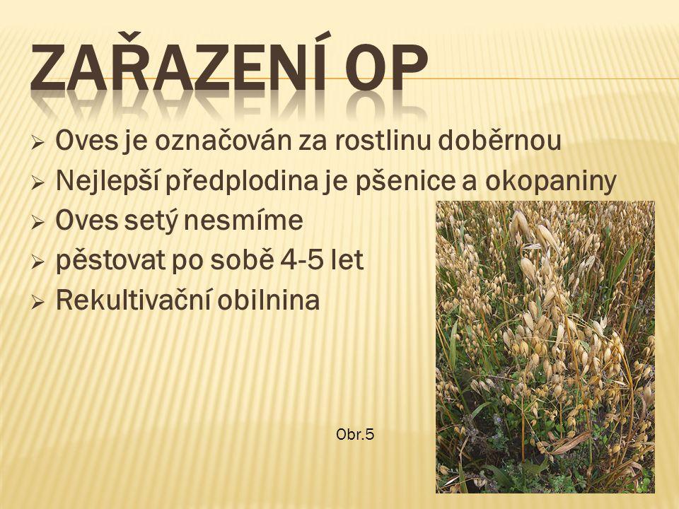  Oves je označován za rostlinu doběrnou  Nejlepší předplodina je pšenice a okopaniny  Oves setý nesmíme  pěstovat po sobě 4-5 let  Rekultivační obilnina Obr.5
