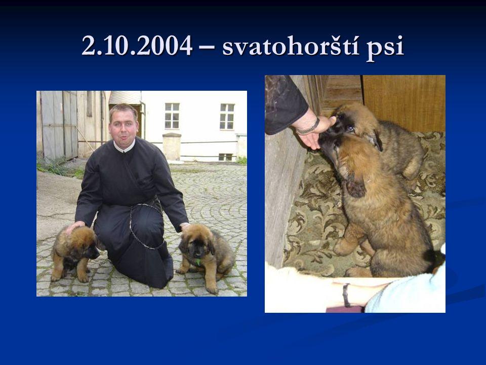 2.10.2004 – svatohorští psi