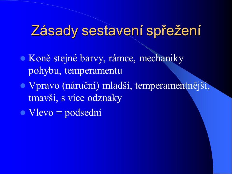 Zásady sestavení spřežení Koně stejné barvy, rámce, mechaniky pohybu, temperamentu Vpravo (náruční) mladší, temperamentnější, tmavší, s více odznaky V
