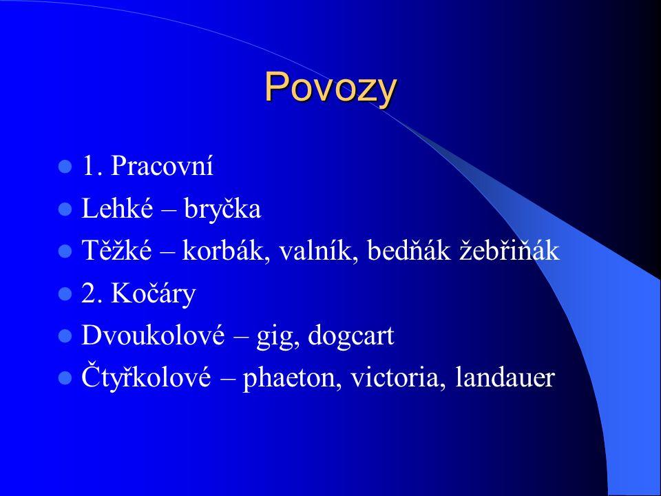 Povozy 1. Pracovní Lehké – bryčka Těžké – korbák, valník, bedňák žebřiňák 2.