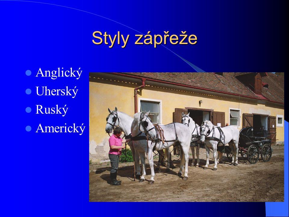 Zásady sestavení spřežení Koně stejné barvy, rámce, mechaniky pohybu, temperamentu Vpravo (náruční) mladší, temperamentnější, tmavší, s více odznaky Vlevo = podsední