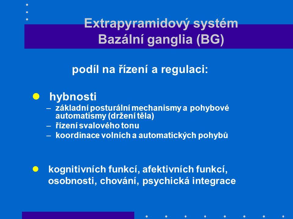 Extrapyramidový systém Bazální ganglia (BG) podíl na řízení a regulaci: hybnosti –základní posturální mechanismy a pohybové automatismy (držení těla) –řízení svalového tonu –koordinace volních a automatických pohybů kognitivních funkcí, afektivních funkcí, osobnosti, chování, psychická integrace