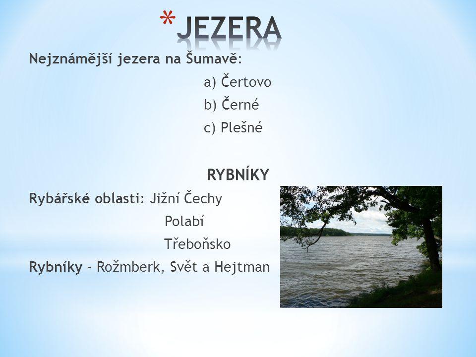 Nejznámější jezera na Šumavě: a) Čertovo b) Černé c) Plešné RYBNÍKY Rybářské oblasti: Jižní Čechy Polabí Třeboňsko Rybníky - Rožmberk, Svět a Hejtman