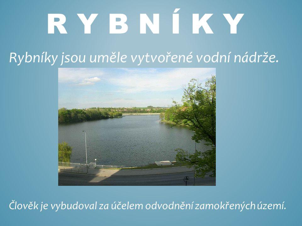 R Y B N Í K Y Rybníky jsou uměle vytvořené vodní nádrže.