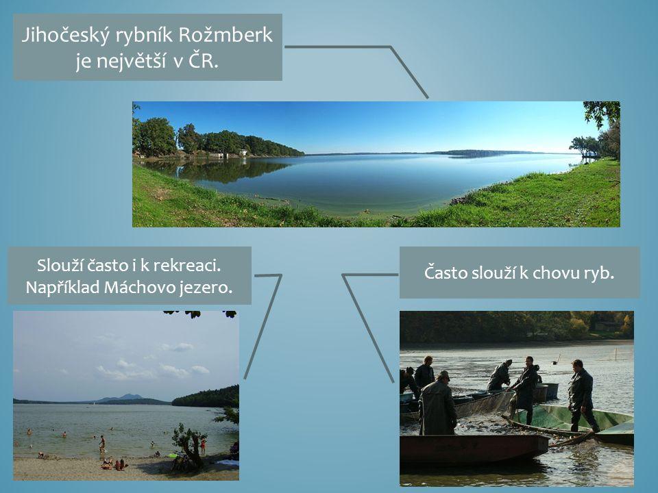 Jihočeský rybník Rožmberk je největší v ČR. Slouží často i k rekreaci.