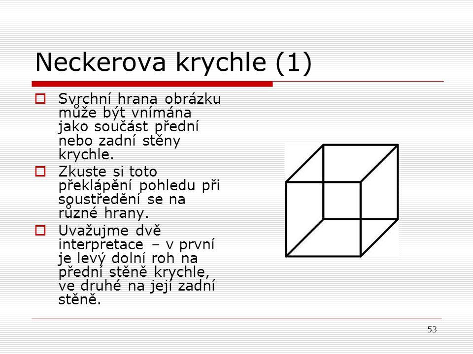 53 Neckerova krychle (1)  Svrchní hrana obrázku může být vnímána jako součást přední nebo zadní stěny krychle.