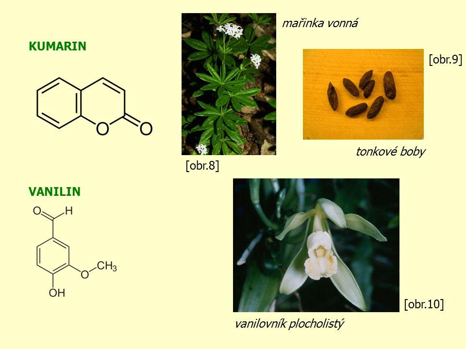 KUMARIN VANILIN vanilovník plocholistý tonkové boby mařinka vonná [obr.8] [obr.9] [obr.10]
