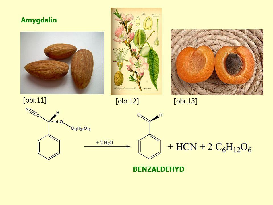 Amygdalin BENZALDEHYD [obr.11] [obr.12][obr.13]
