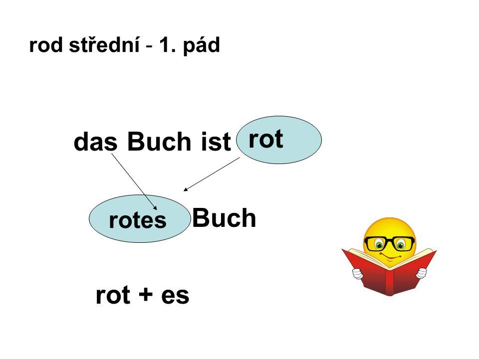 rod střední - 1. pád das Buch ist Buch rot + es rotes rot