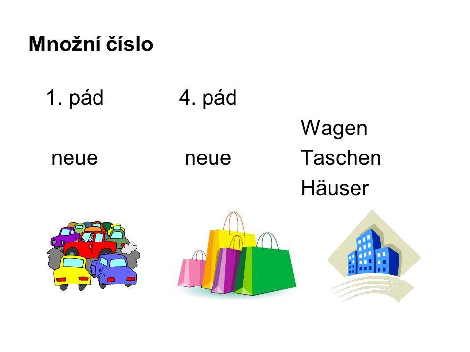 Množní číslo 1. pád 4. pád Wagen neue neue Taschen Häuser