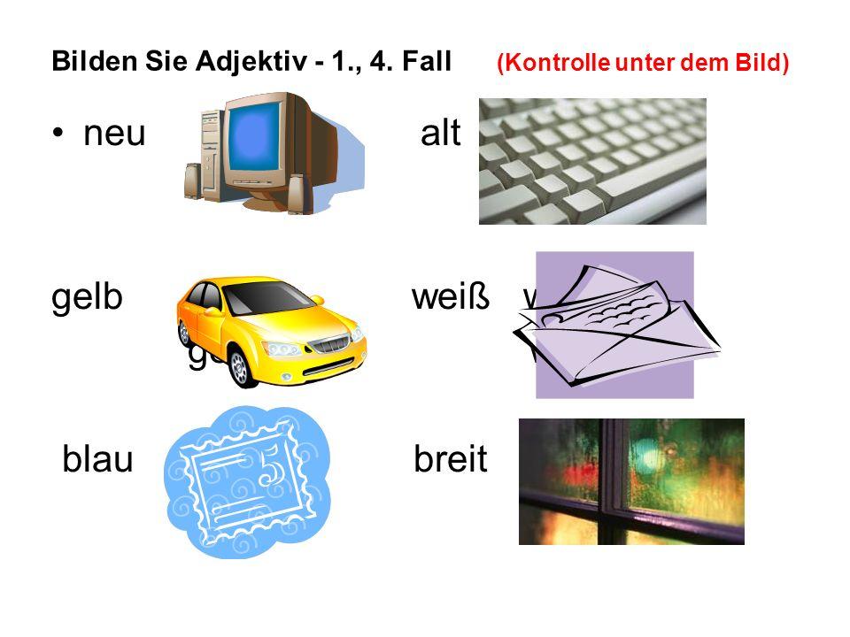 Übersetzen Sie: (Kontrolle unter dem Bild) 1)Koupil jsem šedý počítač.