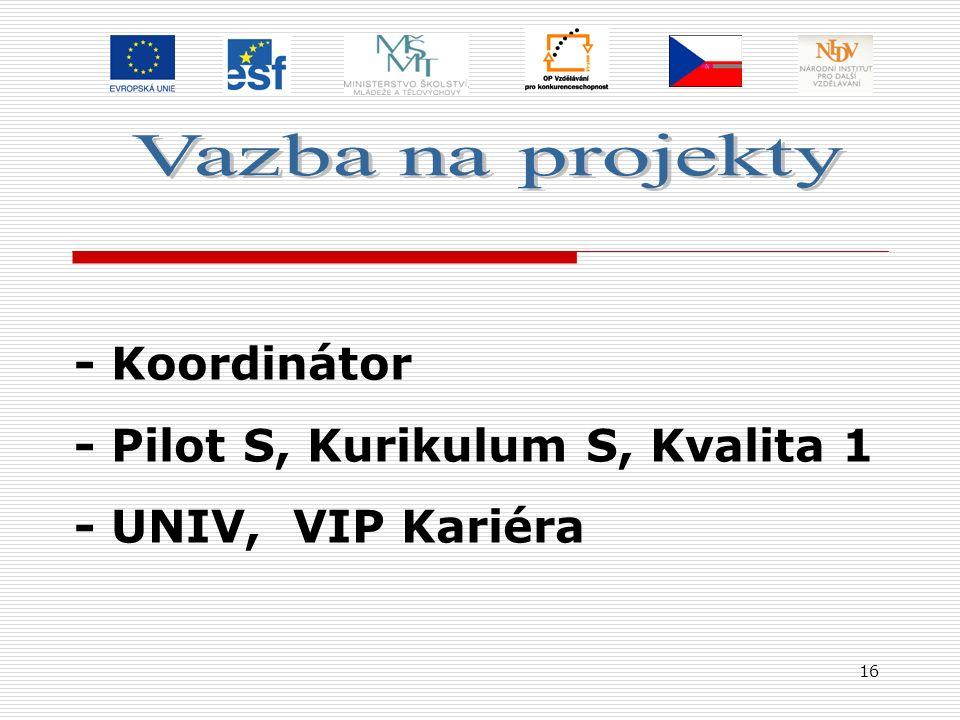 16 - Koordinátor - Pilot S, Kurikulum S, Kvalita 1 - UNIV, VIP Kariéra