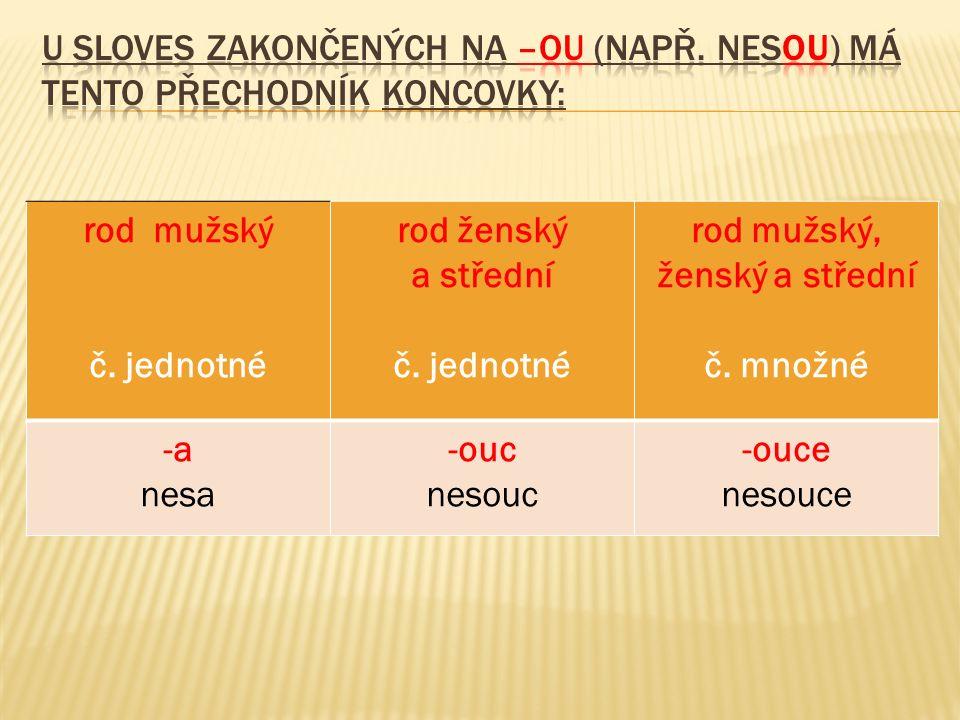 rod mužský č.jednotné rod ženský a střední č. jednotné rod mužský, ženský a střední č.