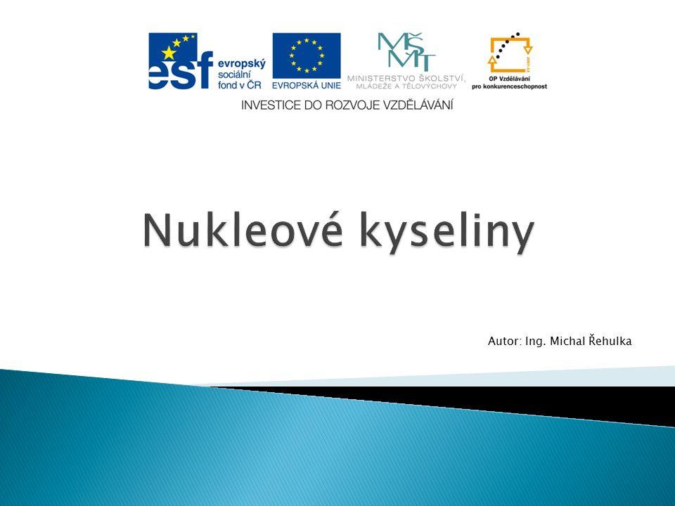 Autor: Ing. Michal Řehulka