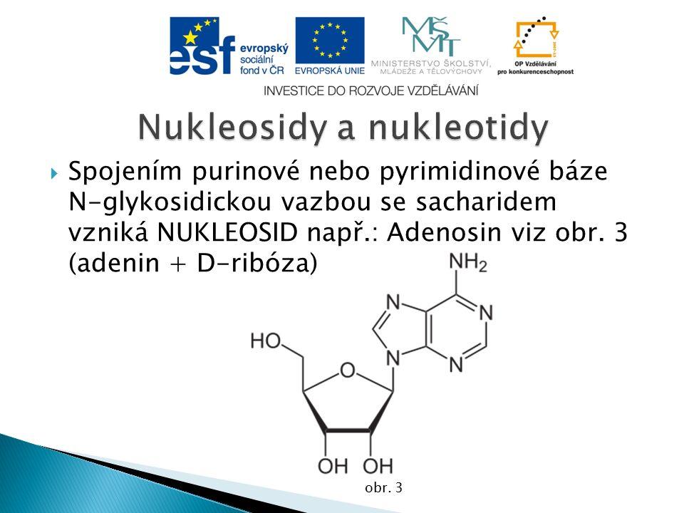  Spojením purinové nebo pyrimidinové báze N-glykosidickou vazbou se sacharidem vzniká NUKLEOSID např.: Adenosin viz obr.