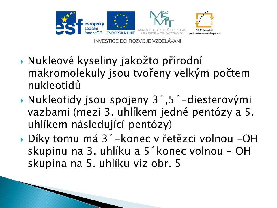  Zdroje obrázků: ◦ obr.1: http://vyhledavani-genu.onlinemarket.cz/geneticky- slovnik.html ◦ obr.