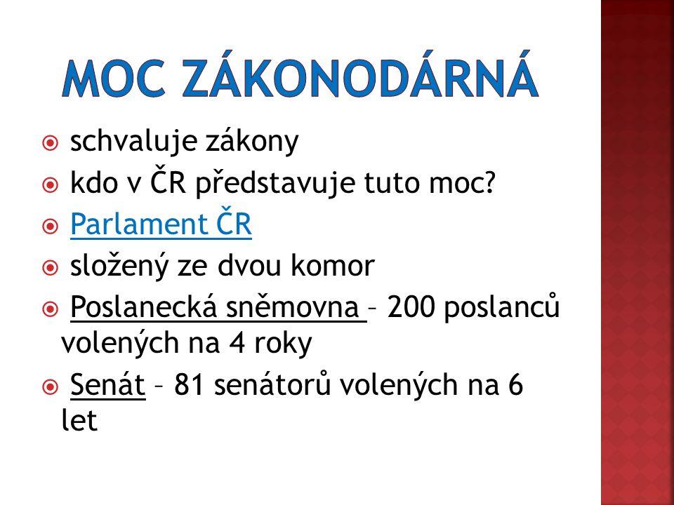  schvaluje zákony  kdo v ČR představuje tuto moc.