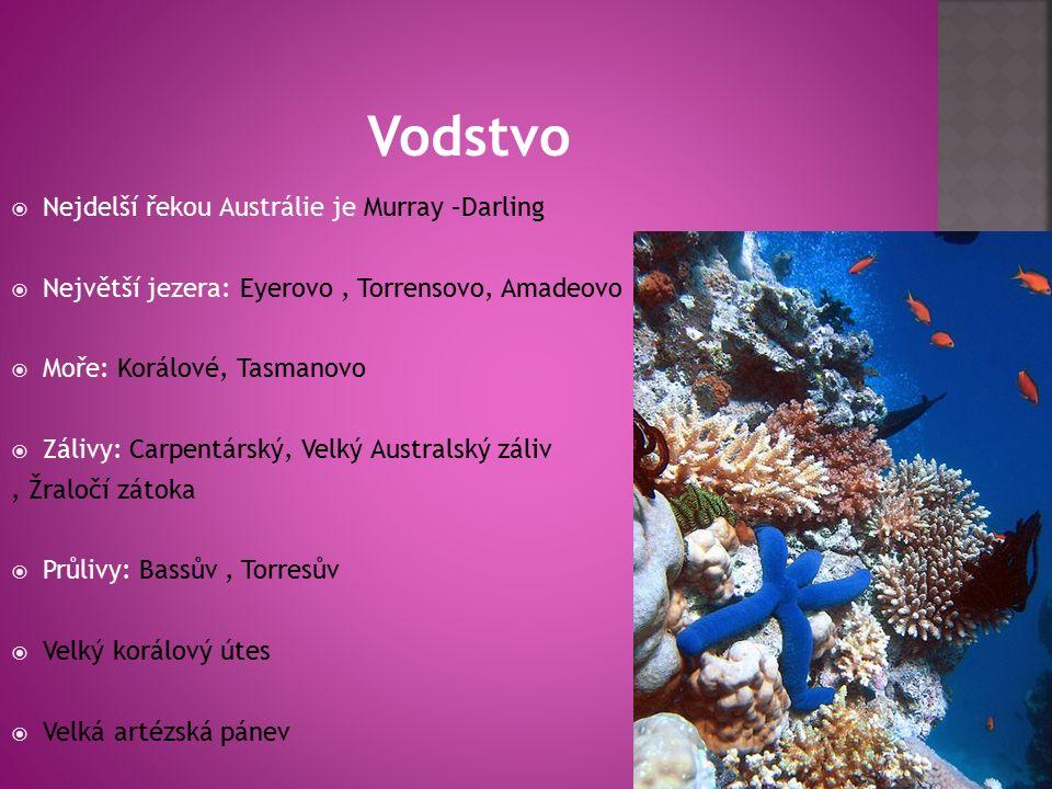  Nejdelší řekou Austrálie je Murray –Darling  Největší jezera: Eyerovo, Torrensovo, Amadeovo  Moře: Korálové, Tasmanovo  Zálivy: Carpentárský, Velký Australský záliv, Žraločí zátoka  Průlivy: Bassův, Torresův  Velký korálový útes  Velká artézská pánev