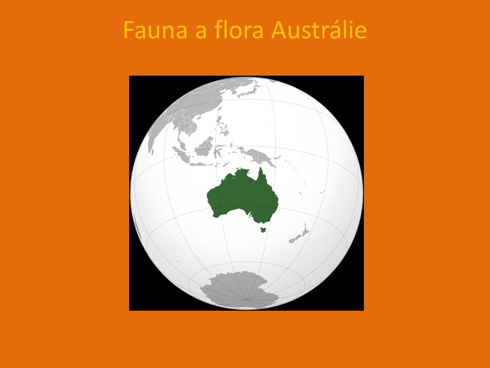 Fauna a flora Austrálie