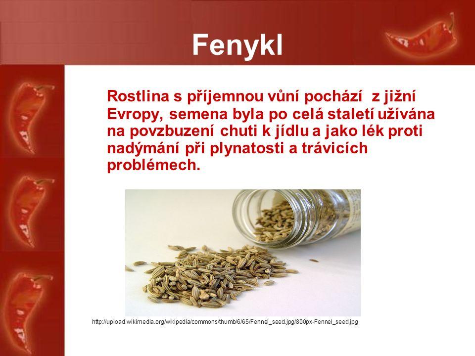 Fenykl Rostlina s příjemnou vůní pochází z jižní Evropy, semena byla po celá staletí užívána na povzbuzení chuti k jídlu a jako lék proti nadýmání při plynatosti a trávicích problémech.