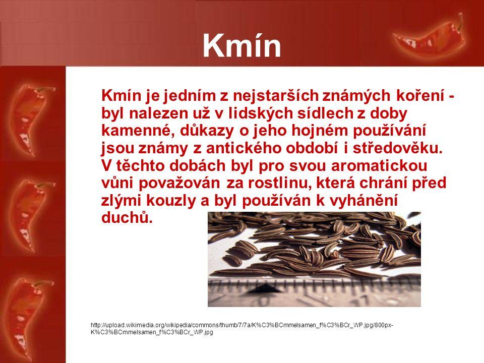 Kmín Kmín je jedním z nejstarších známých koření - byl nalezen už v lidských sídlech z doby kamenné, důkazy o jeho hojném používání jsou známy z antického období i středověku.