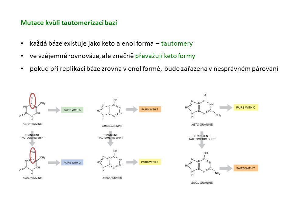 Mutace kvůli tautomerizaci bazí každá báze existuje jako keto a enol forma – tautomery ve vzájemné rovnováze, ale značně převažují keto formy pokud při replikaci báze zrovna v enol formě, bude zařazena v nesprávném párování