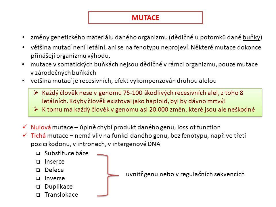 změny genetického materiálu daného organizmu (dědičné u potomků dané buňky) MUTACE Nulová mutace – úplně chybí produkt daného genu, loss of function Tichá mutace – nemá vliv na funkci daného genu, bez fenotypu, např.