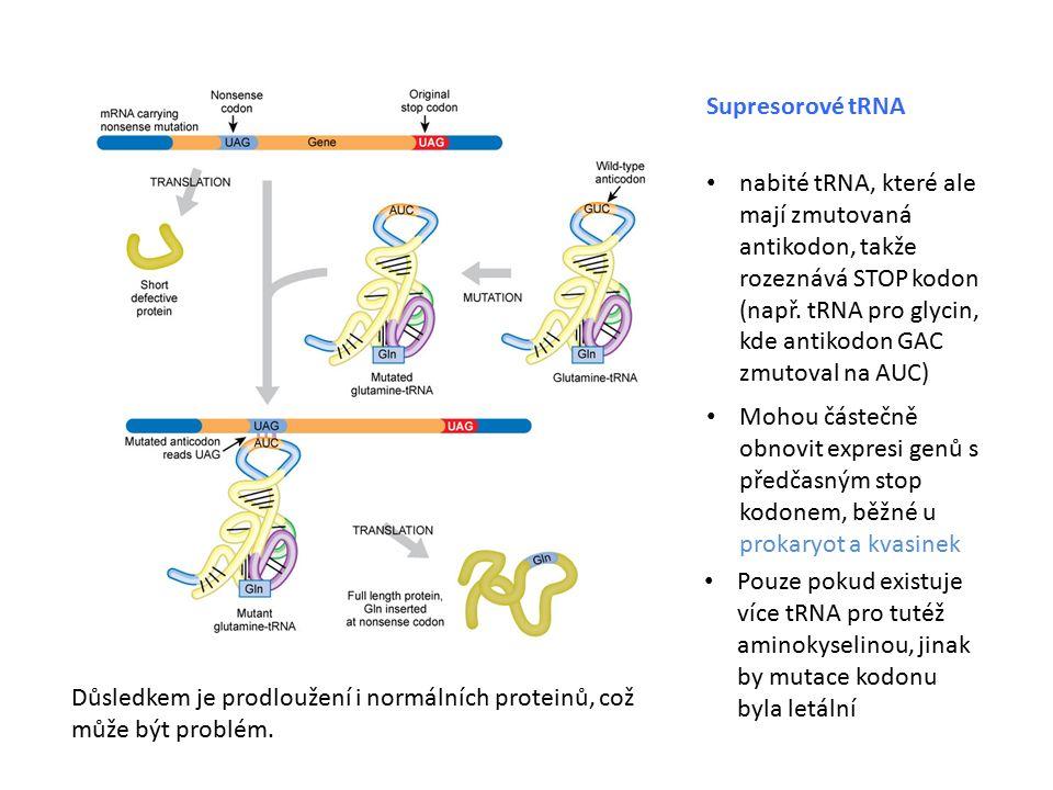 Supresorové tRNA nabité tRNA, které ale mají zmutovaná antikodon, takže rozeznává STOP kodon (např.