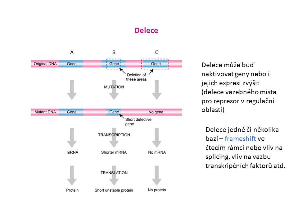 Delece Delece jedné či několika bazí – frameshift ve čtecím rámci nebo vliv na splicing, vliv na vazbu transkripčních faktorů atd.