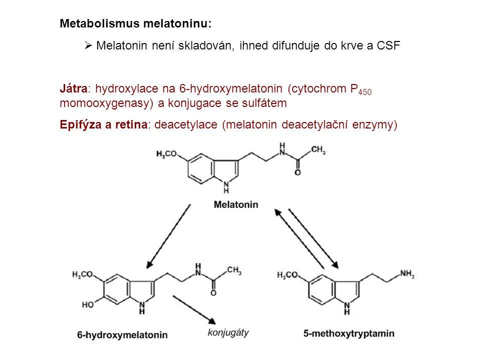 Metabolismus melatoninu:  Melatonin není skladován, ihned difunduje do krve a CSF Játra: hydroxylace na 6-hydroxymelatonin (cytochrom P 450 momooxygenasy) a konjugace se sulfátem Epifýza a retina: deacetylace (melatonin deacetylační enzymy)