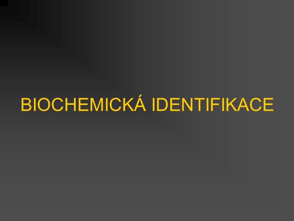 BIOCHEMICKÁ IDENTIFIKACE
