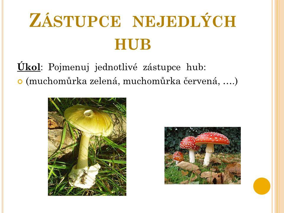 Z ÁSTUPCE NEJEDLÝCH HUB Úkol : Pojmenuj jednotlivé zástupce hub: (muchomůrka zelená, muchomůrka červená, ….)