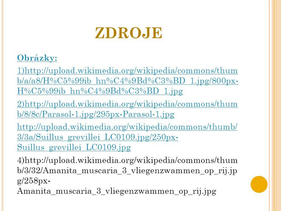 ZDROJE Obrázky: 1)http://upload.wikimedia.org/wikipedia/commons/thum b/a/a8/H%C5%99ib_hn%C4%9Bd%C3%BD_1.jpg/800px- H%C5%99ib_hn%C4%9Bd%C3%BD_1.jpg 2)http://upload.wikimedia.org/wikipedia/commons/thum b/8/8c/Parasol-1.jpg/295px-Parasol-1.jpg http://upload.wikimedia.org/wikipedia/commons/thumb/ 3/3a/Suillus_grevillei_LC0109.jpg/250px- Suillus_grevillei_LC0109.jpg 4)http://upload.wikimedia.org/wikipedia/commons/thum b/3/32/Amanita_muscaria_3_vliegenzwammen_op_rij.jp g/258px- Amanita_muscaria_3_vliegenzwammen_op_rij.jpg