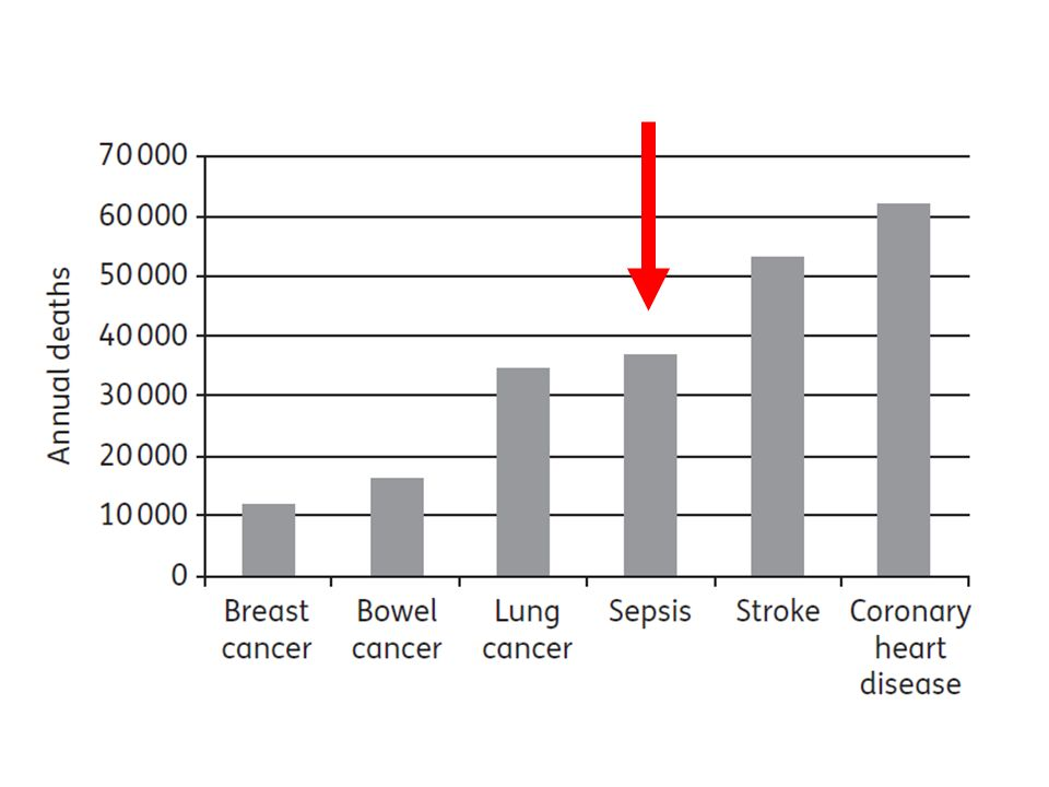 Diagnóza sepse odběr biologického materiálu před aplikací ATB –pokud neoddálí nasazení ATB hemokultury –1 odběr perkutánně –1 odběr z každého intravaskulárního katetru zavedeného > 48 hod.