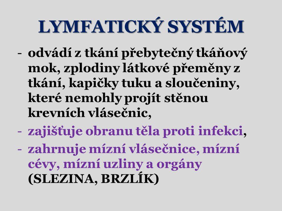 LYMFATICKÝ SYSTÉM -odvádí z tkání přebytečný tkáňový mok, zplodiny látkové přeměny z tkání, kapičky tuku a sloučeniny, které nemohly projít stěnou krevních vlásečnic, -zajišťuje obranu těla proti infekci, -zahrnuje mízní vlásečnice, mízní cévy, mízní uzliny a orgány (SLEZINA, BRZLÍK)