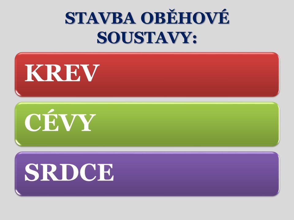 STAVBA OBĚHOVÉ SOUSTAVY: KREVCÉVYSRDCE