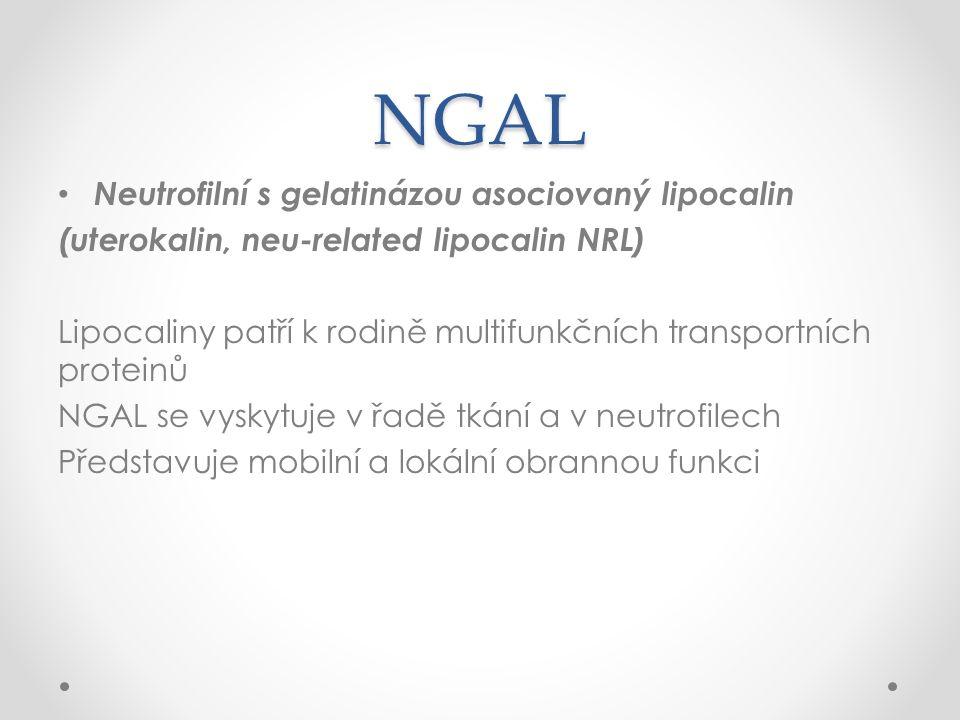 NGAL Neutrofilní s gelatinázou asociovaný lipocalin (uterokalin, neu-related lipocalin NRL) Lipocaliny patří k rodině multifunkčních transportních proteinů NGAL se vyskytuje v řadě tkání a v neutrofilech Představuje mobilní a lokální obrannou funkci
