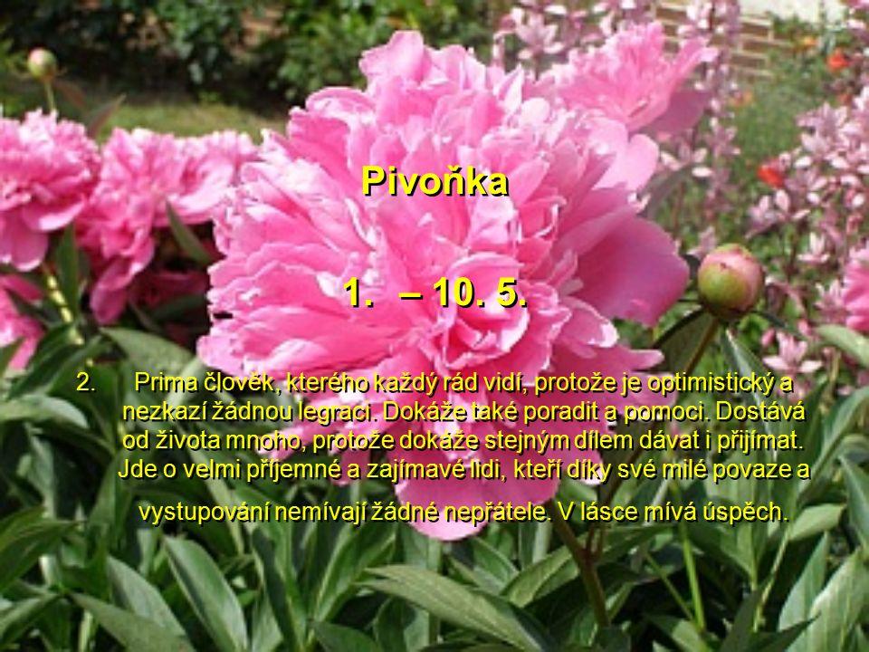 Kamélie 21. – 30. 4. Nádherná květina, krásný člověk, plný vášně a citu. Tito lidé touží po uznání a výlučném postavení ve společnosti. Dokáží druhé s