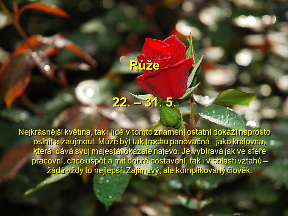 Konvalinka 11. – 21. 5. Roztomilá květinka, kterou má každý rád, i tento člověk se dokáže vloudit do přízně, protože je velmi cílevědomý, může na druh