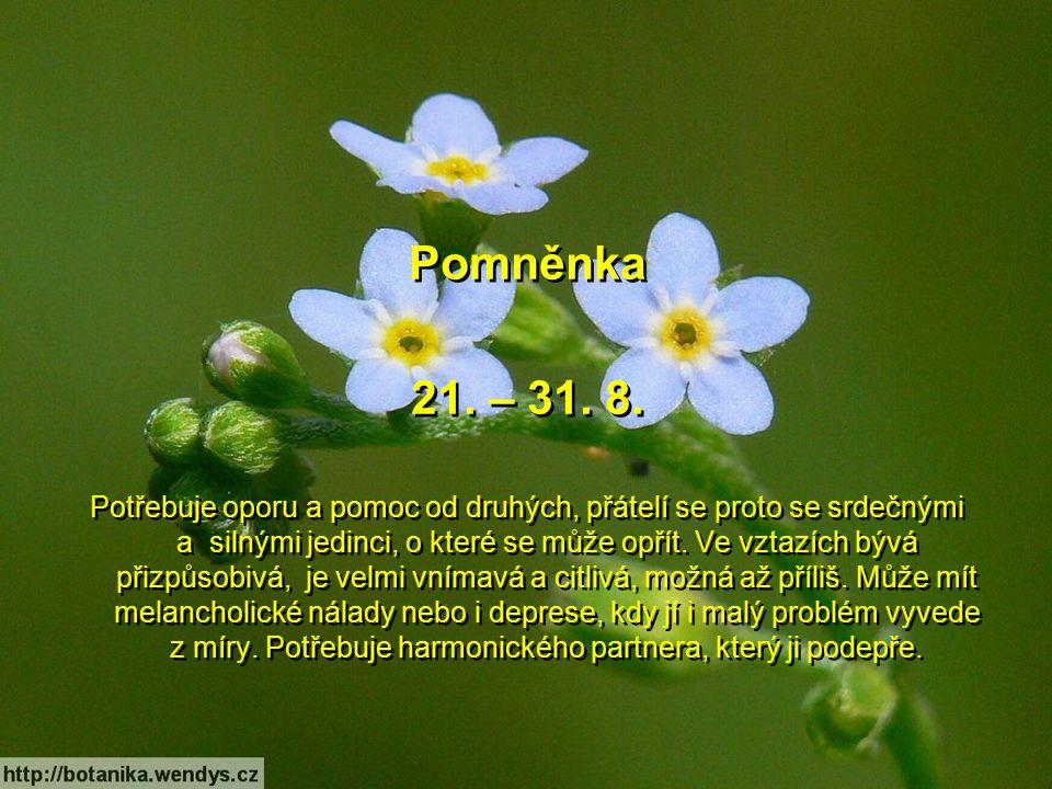 Čekanka 11. – 20. 8. Příjemný člověk narozený v tomto znamení je ochotný a trpělivý a rád pomáhá druhým. Není vztahovačný, takže se s ním dá výborně v