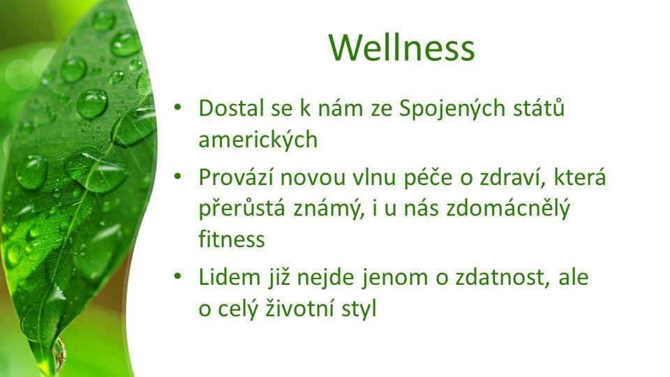 Wellness Dostal se k nám ze Spojených států amerických Provází novou vlnu péče o zdraví, která přerůstá známý, i u nás zdomácnělý fitness Lidem již nejde jenom o zdatnost, ale o celý životní styl
