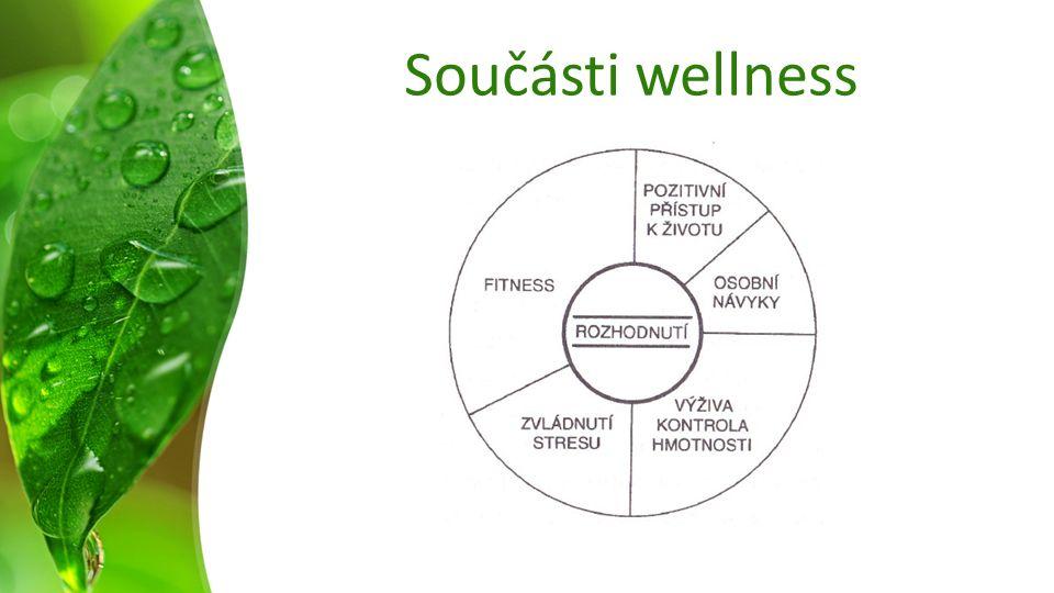 Součásti wellness