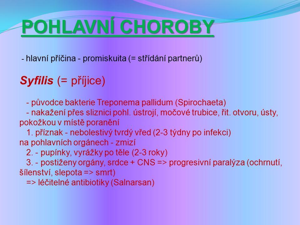 POHLAVNÍ CHOROBY - hlavní příčina - promiskuita (= střídání partnerů) Syfilis (= příjice) - původce bakterie Treponema pallidum (Spirochaeta) - nakažení přes sliznici pohl.