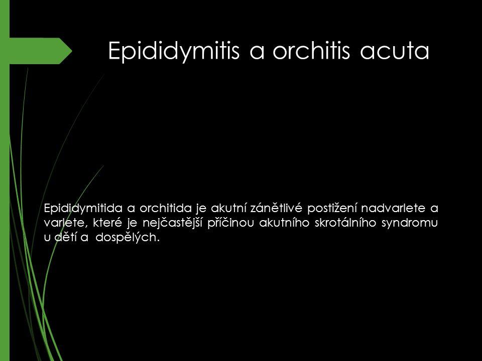 Epididymitis a orchitis acuta Epididymitida a orchitida je akutní zánětlivé postižení nadvarlete a varlete, které je nejčastější příčinou akutního skr