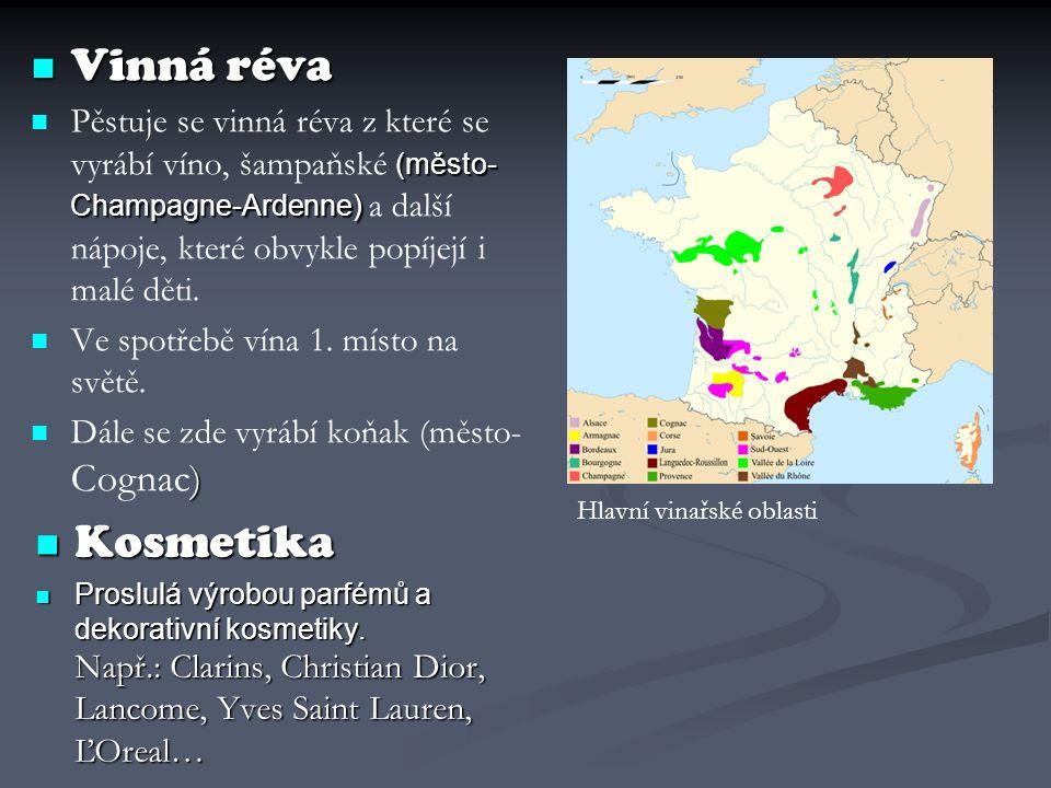 Vinná réva Vinná réva (město- Champagne-Ardenne) Pěstuje se vinná réva z které se vyrábí víno, šampaňské (město- Champagne-Ardenne) a další nápoje, kt